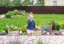Inspiracija za vrt, cvjetnjak, dvorište...