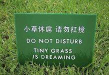 Znate li što je Chinglish?